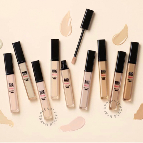 Big Cover Skin Fit Concealer Pro